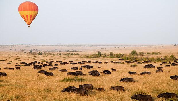 keliling african serengeti naik balon udara